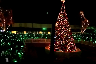 Xylobands and LED effects light up a holiday tree lighting event