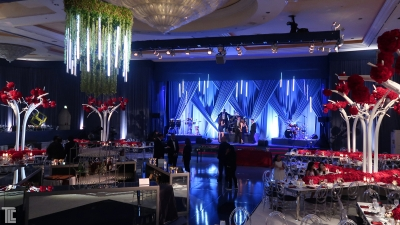 LED Tubes light up elegant event with wireless light effects