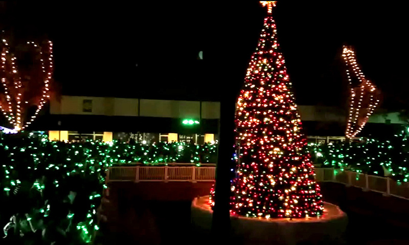 christmas tree lighting ideas. Tree Lighting FX \u2013 TLC Holiday Event Ideas Christmas